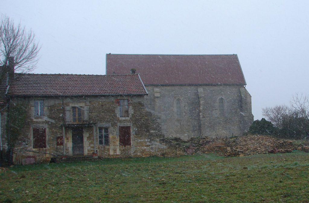 Burgund 241